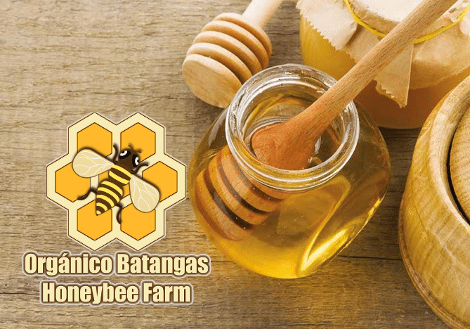 Organico Batangas pure honey